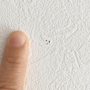 壁 穴 補修